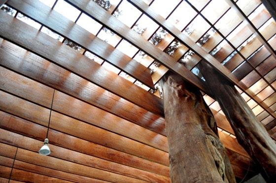 Árbol en techo casa rústica