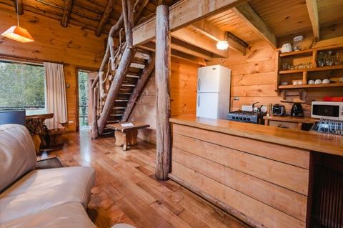 Diseño de casa pequeña rústica, hecha de madera y troncos ...