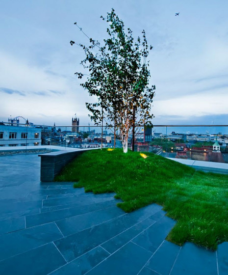 Artistic design of garden on the roof of housing