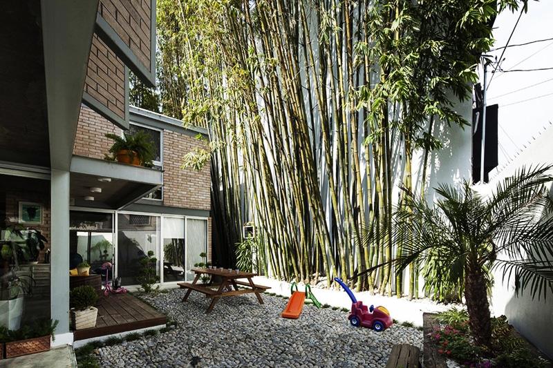 Jardineras Con Bambu. Plantas Bamb Para Tapar A Los Vecinos With ...